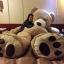 ตุ๊กตาหมีสก็อตต์ Scott Bear ไซส์ 1.6 เมตร thumbnail 8