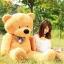 ตุ๊กตาหมี ลืมตา ขนาด 2.0 เมตร thumbnail 7