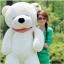 ตุ๊กตาหมี หลับตา ขนาด 1.2 เมตร thumbnail 5