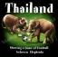 ลายสกรีนฮาพโทนแนวไทยแลนด์ thumbnail 1
