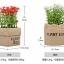กระถางดอกไม้ปลอม สูง15cm Tree10 thumbnail 21