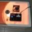 เครื่องฟักไข่ DIY3 thumbnail 2