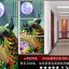 ArtHome210 ภาพนกยูงคู่ชมจันทร์ thumbnail 1