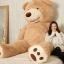 ตุ๊กตาหมีสก็อตต์ Scott Bear ไซส์ 1.6 เมตร thumbnail 24