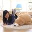 ตุ๊กตาหมีขี้เซา Sleepy bear สีช็อคโกแล็ต thumbnail 2