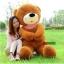 ตุ๊กตาหมี หลับตา ขนาด 1.2 เมตร thumbnail 8