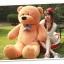 ตุ๊กตาหมี ลืมตา ขนาด 1.8 เมตร thumbnail 1