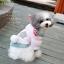 เสื้อสุนัขกระต่ายน้อยสีชมพู (ไซส์ XS,M) thumbnail 1