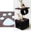 คอนโดแมว C6 (ส่งฟรี) thumbnail 1