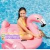 ห่วงยางแฟนซี แพยาง แพยางเป่าลม นกฟามิงโก้น้อย สีชมพู รุ่น 57558 INTEX (Flamingo)