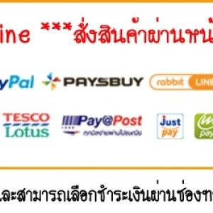 เรื่องการชำระเงิน Online