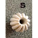 มือจับ ปุ่มแขวน เม็ดมะยมนูน มีเส้นทอง - sz S 2.5 ซม.