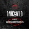 [Pre] BTS : 1st Album - DARK & WILD