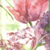แนวภาพดอกไม้ ทิวลิป ไลแลค ภาพวาด กระดาษแนพกิ้นสำหรับทำงาน เดคูพาจ Decoupage Paper Napkins เป็นภาพเต็มแผ่น ขนาด 21X22cm