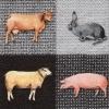 แนวภาพสัตว์ วัวกระต่ายหมู ภาพโทนสีเทาดำ เป็นภาพ 4 บล๊อค กระดาษแนพกิ้นสำหรับทำงาน เดคูพาจ Decoupage Paper Napkins ขนาด 33X33cm