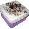 กล่องเก็บของ กล่องของขวัญ ผักตบชวาทรงจตุรัส แบบฝาครอบ ลายฝูงหมาหมู่