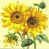 แนวภาพดอกไม้ ช่อดอกทานตะวันบนพื้นครีม เป็นภาพ 4 บล๊อค กระดาษแนพกิ้นสำหรับทำงาน เดคูพาจ Decoupage Paper Napkins ขนาด 33X33cm