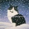 กระดาษสาพิมพ์ลาย สำหรับทำงาน เดคูพาจ Decoupage แนวภาพ แมวขาวดำ ตากลม นั่งแอ๊คท่าเท่ห์ ท่ามกลางหิมะตก