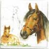 แนวภาพสัตว์ ลายเส้นลงสีม้า เป็นภาพแนวยาว กระดาษแนพคินสำหรับทำงาน เดคูพาจ Decoupage Paper Napkins เป็นภาพ 4 บล๊อค ขนาด 25X25 ซม