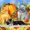 กระดาษสาพิมพ์ลาย สำหรับทำงาน เดคูพาจ Decoupage แนวภาำพ ลูกแมวเปอร์เซีย 3 ตัว 3 สี น่ารักมาก ตัวเท่าฟักทองเอง