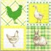 แนวภาพสัตว์ ไก่เป็ดกระต่าย ในกรอบลายเล็ก ภาพโทนสีเหลือง เป็นภาพ 4 บล๊อค กระดาษแนพกิ้นสำหรับทำงาน เดคูพาจ Decoupage Paper Napkins ขนาด 33X33cm