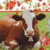 แนวภาพสัตว์ น้องวัวกับกรอบลายแต่งดอกไม้ ภาพโทนสีเขียว เป็นภาพ 4 บล๊อค กระดาษแนพกิ้นสำหรับทำงาน เดคูพาจ Decoupage Paper Napkins ขนาด 33X33cm