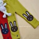 กางเกงเด็ก(เลคกิ้งกระต่ายใหญ่) หมายเลข2 ไซส์ 100,110,120