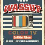 [Pre] Wa$$up : 3rd Mini Album - COLOR TV