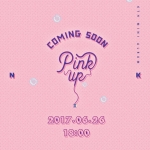 [Pre] Apink : 6th Mini Album - Pink Up (A Ver.) +Poster