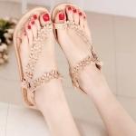 รองเท้า แฟชั่น เกาหลี ทางดอกไม้ประดับ PA001