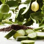 หัวน้ำหอมกลิ่น Earlgrey Cucumber