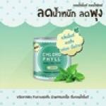 คลอโรฟิลล์ (Chloro Mint Chloro Phyll)ผลิตภัณฑ์เสริมอาหาร