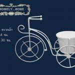 จักรยานสีขาว