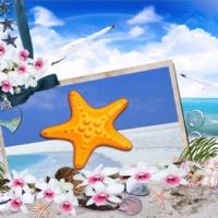 ร้านปลาดาว starfish-shop