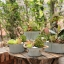 Pre-Order กระถางต้นไม้สังกะสีทำสีเก่าลายริ้ว หูเชือก Zakka เซตละ 2-3 ใบ มี 3 แบบ thumbnail 4