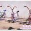 จักรยาน 3 ที่ thumbnail 5
