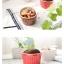 Pre-Order ชามเซรามิค ใส่ขนม พุดดิ้ง ซุเฟร่ ไอศกรีม ขนาดเล็ก ลายริ้วคลาสสิค มีให้เลือก 7 สี Zakka thumbnail 5
