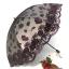 umbrella ร่มกันแดด ป้องกันรังสี UV ตกแต่งด้วยลูกไม้ หรูหรามากค่ะ (ตัวแทน 840บาท) thumbnail 1