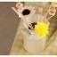 พร้อมส่ง ถังนม มีหู ทำสีพื้นเก่า Zakka thumbnail 6