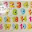 ของเล่นไม้จิ๊กซอว์จับคู่เงาตัวเลข 0-20 thumbnail 1