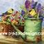 กระดาษอาร์ตพิมพ์ลาย สำหรับทำงาน เดคูพาจ Decoupage แนวภาำพ นกน้อยสีเหลือง 2 ตัว เล่นซ่อนหา กันอยู่บนบัวรดน้ำสังกะสีปลูกดอกไม้ สีสวยหวาน (ปลาดาวดีไซน์) thumbnail 1