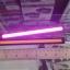 ไฟ Daytime Running Light (DRL) thumbnail 9