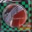 ฝาถังน้ำมันโครเมี่ยม MOBILIO thumbnail 1