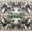 แนวภาพสัตว์ ลูกแมวน้อยลายขาวดำ ภาพโทนสีน้ำลงสี เป็นภาพ 4 บล๊อค กระดาษแนพกิ้นสำหรับทำงาน เดคูพาจ Decoupage Paper Napkins ขนาด 33X33cm thumbnail 2