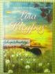 คืนรักคิมหันต์ (Secrets of a Summer Night) / Lisa Kleypas (ลิซ่า เคลย์แพส) / กัญชลิกา