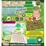 Herbal SlimDetox ชนิดแผง