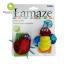 สายรัดข้อมือเสริมพัฒนาการ Lamaze Garden Bug Wrist Rattle thumbnail 1