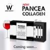 PANCEA COLLAGEN แพนเซีย คอลลาเจน 1 กล่อง