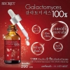 Secret Pitera Galactomyces 100% กาแลคโตมัยเซส หัวเชื้อพิเทร่า น้ำหมักยีสต์เข้มข้น 10 ml