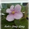 Rob's Ooey Goey - Miniature